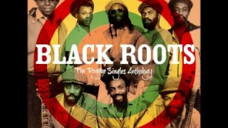 Black Roots – The System