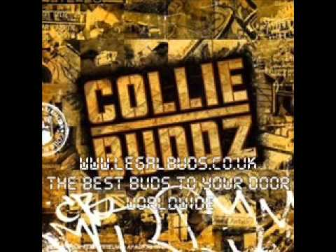 Collie Buddz – On The Rocks – Bermuda
