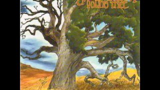 Groundation – Confusing Situation