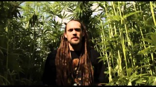Positiv Young Lion – Cannabis – Official Videa HD