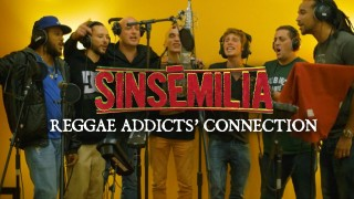 Sinsémilia & Danakil & Dub Inc & Yaniss Odua & Naaman – Reggae Addicts Connection – Official Video HD