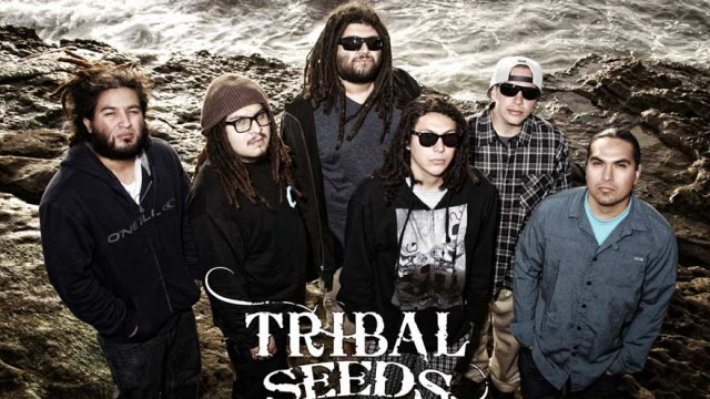 Tribal Seeds & Don Carlos – Blood Clot – Video + Lyric
