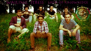Wailing Trees – Lack Of Knowledge – Official Sound HQ