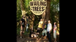 Wailing Trees – Borders And Gaps – Official Sound HQ