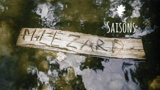 Monsieur Lézard- Saisons – Official Video HD/HQ