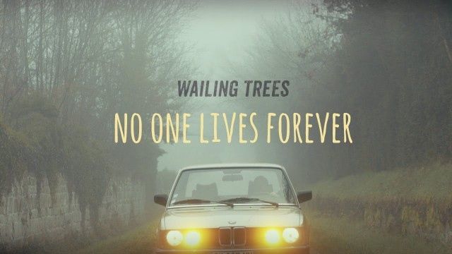 Wailing Trees – No One Lives Forever – Official Video