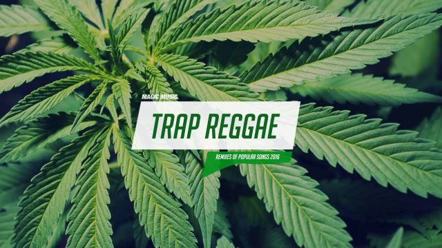 Best Trap Reggae Mix 2016 💊 Trap & Bass Reggae Music 💊