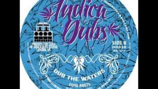 Indica Dubs – Sound System Series 7″