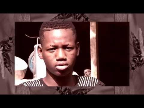 Salim Jah Peter Feat Cheick Tidiane Seck – Soboro (Official Music Video)